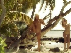 Drop-dead gorgeous blondes are posing naked to hand the littoral